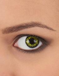 Dämonische Kontaktlinsen Halloween-Accessoire schwarz-gelb