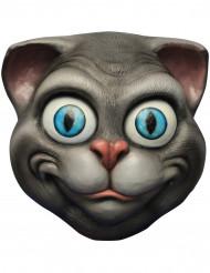 Lustige Maske Katze für Erwachsene grau