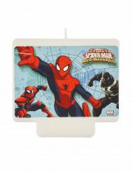 Spiderman™ Geburtstagskerze Lizenzware