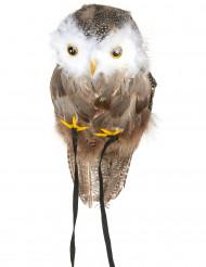 Schulterschmuck Eule braun-gelb-weiss 30cm