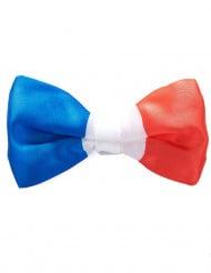 Frankreich-Fliege Fanartikel blau-rot-weiss