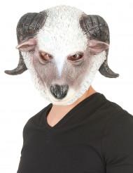 Schafbock Maske aus Latex weiss-grau