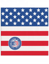 Servietten USA 12,5x12,5cm blau-rot-weiss
