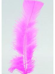 100 Federn pink