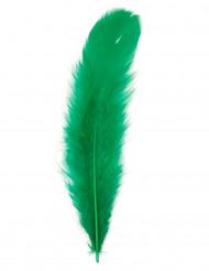 100 Federn grün