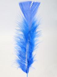 100 Federn blau