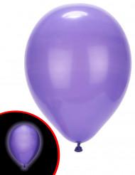 LED-Luftballons Illooms leuchtende Luftballons 5 Stück lila
