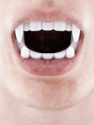 Kinder Dracula Zähne Vampirgebiss weiss
