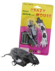 Aufziehbare Ratte Scherzartikel schwarz