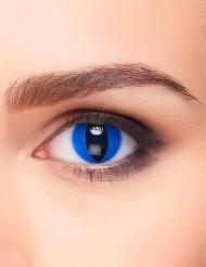 Kontaktlinsen Katze schwarz-blau