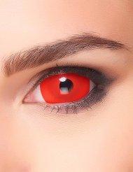 Sclera Kontaktlinsen Red Devil rot