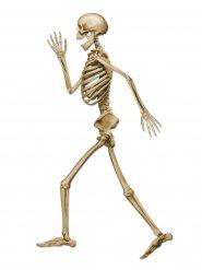 Laufendes Skelett Halloween-Deko Pappfigur beige 94cm