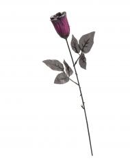 Rose mit Pailletten lila