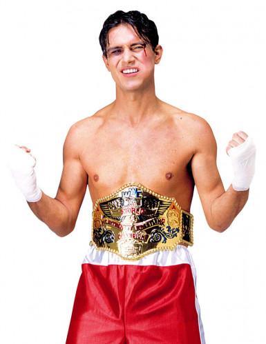 Boxer Weltmeister Gürtel gold-bunt