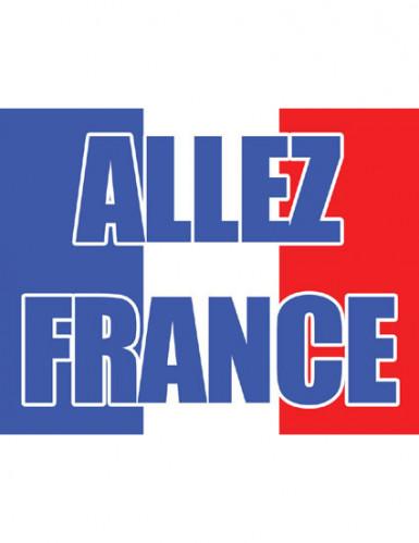 Frankreich Flagge Allez France Länder-Fanartikel blau-weiss-rot 70x100cm