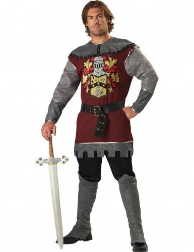 Ritterkostüm Mittelalter-Herrenkostüm grau-bordeaux