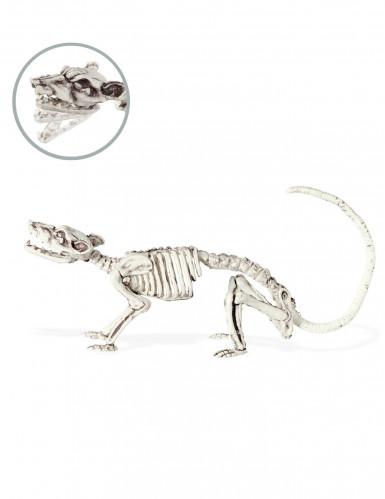 Skelett-Ratte Halloween-Deko weiss 16x23cm