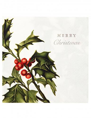 papier servietten merry christmas 20 st ck gr n weiss g nstige faschings partydeko zubeh r. Black Bedroom Furniture Sets. Home Design Ideas