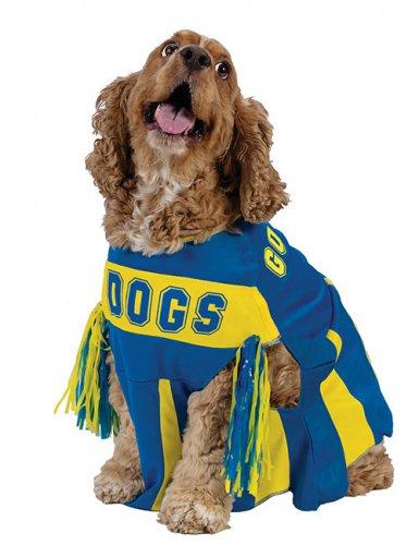 Cheerleader Hundekostüm blau-gelb