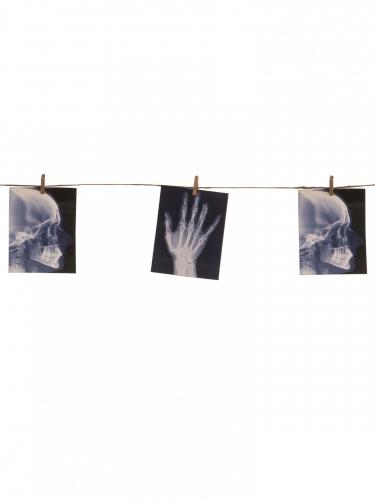 Girlande Röntgenbilder Halloween-Dekoration schwarz-weiss 160cm