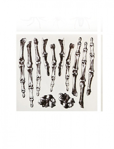 Skelett-Klebetattoos für Erwachsene 12-teilig schwarz-weiss