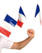 Fan-Fahne Frankreich
