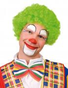 Afro-Perücke Clown Kostüm-Accessoire grün