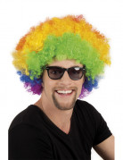 Regenbogen Afro-Perücke Kostüm-Accessoire bunt