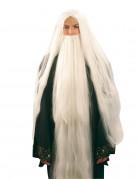Beeindruckender Bart für Zauberer und Gurus Kostüm-Accessoire weiss