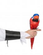 Papagei Deko-Vogel bunt 40cm