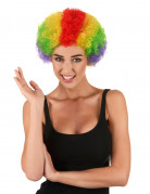 Clown Afroperücke für Erwachsene bunt