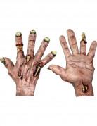 Grusel Zombie Handschuhe für Erwachsene Halloween hautfarben-gelb