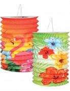 Hawaii Lampions Party-Deko 2 Stück bunt 16cm