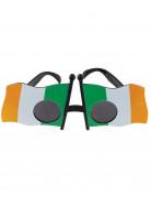 St. Patricks Day Brille für Erwachsene bunt