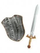 Mittelalter-Set mit Schild und Schwert Kostümaccessoire silber-gold