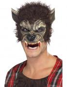 Halloween- Maske Werwolf Kostümaccessoire braun-beige-rot