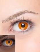 UV Kontaktlinsen Schwarzlicht orange