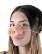 Schweinchen Nase haut
