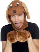 Hundeverkleidung süß Erwachsene braun