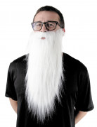 Langer Bart zauberer weiss 65 cm