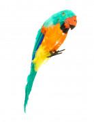 Farbenfroher Papagei Piratenkostüm-Zubehör bunt 38cm