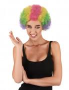 Lustige Clown Afro-Perücke bunt