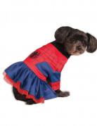 Marvel Spidergirl Hundekostüm Lizenzware rot-blau