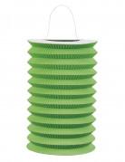 Lampion aus Papier Partydekoration grün 15 cm Durchmesser