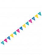 Geburtstagsgirlande Schriftzug Happy Birthday bunt 2,74m