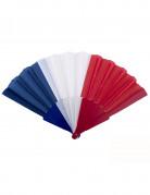 Frankreich-Fächer blau/weiß/rot