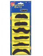 Cowboy Bart Moustache-Set 6 Stück schwarz