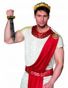 Dolch Römer Kämpfer Schwert Kostümzubehör für Erwachsene schwarz-silber-gold 48cm