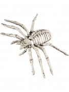 Knöcherne Spinne Untote Halloween-Spinne beige 22x10cm