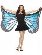 Zarte Schmetterlings-Flügel schwarz-blau